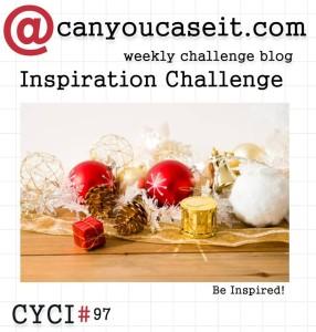 CYCI97-286x300-1