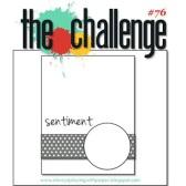 the-challenge-76