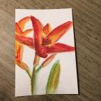 ek-gorman-floral2