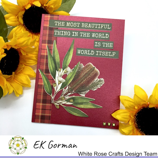 EK Gorman, White Rose Craft, Marvelous Men FFC1 j